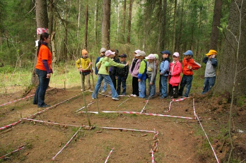 Командообразующие тренинги для школьников