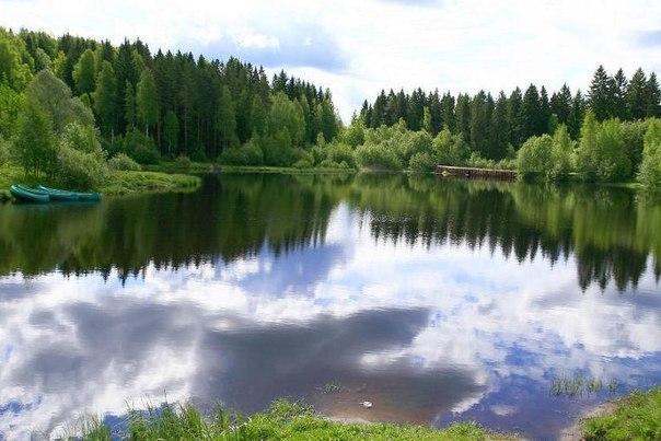 Во время поездки мы искупаемся на озере в Токсово