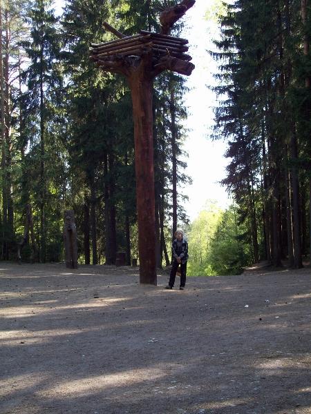 Лесные квесты