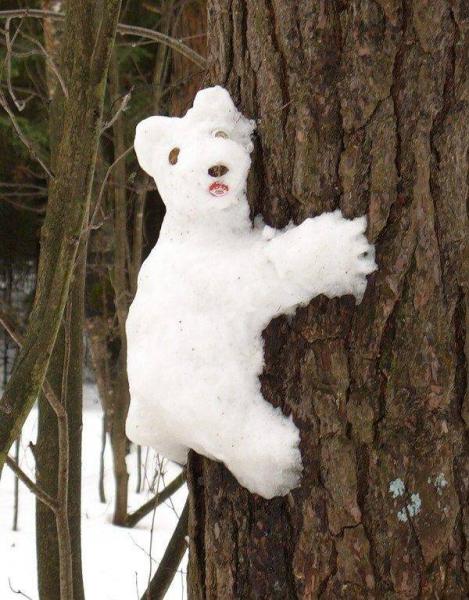 Зимняя программа  «Снежные скульпторы»