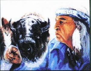 ind-i-bizon