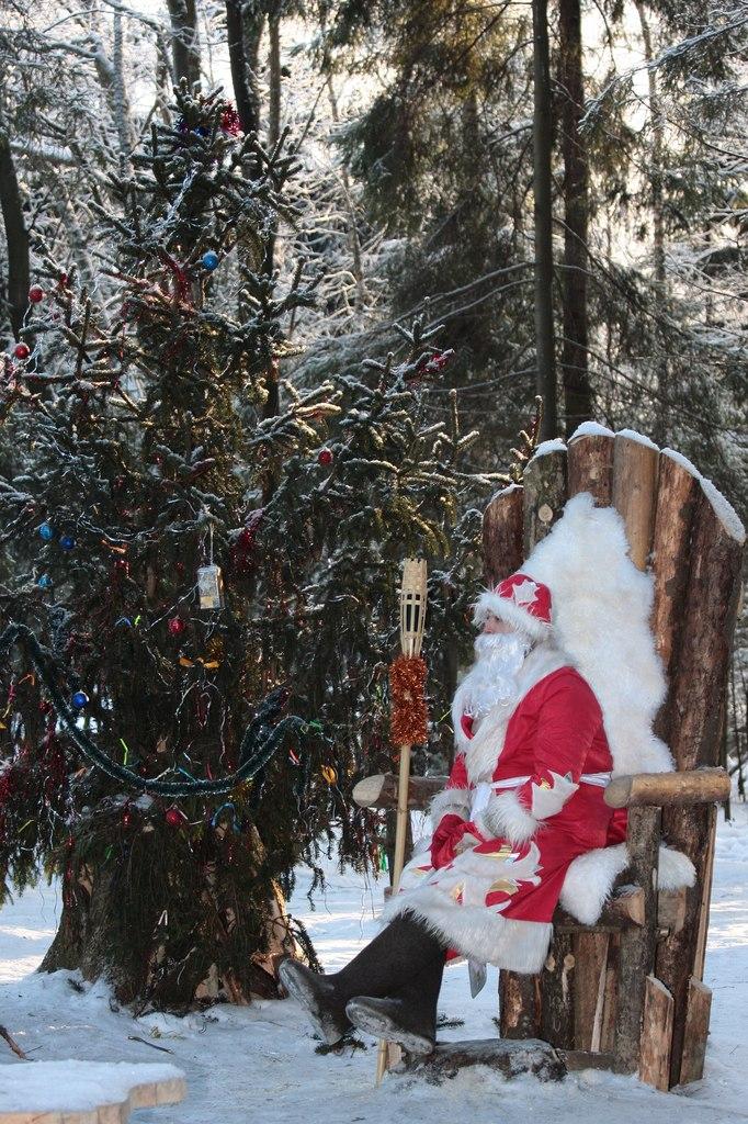 Резиденция Деда Мороза в токсовском лесу