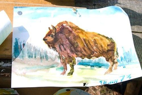 Дети после наших экскурсий любят рисовать зубробизонов